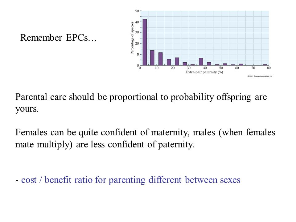 Parental care should be proportional to probability offspring are yours. Females can be quite confident of maternity, males (when females mate multipl