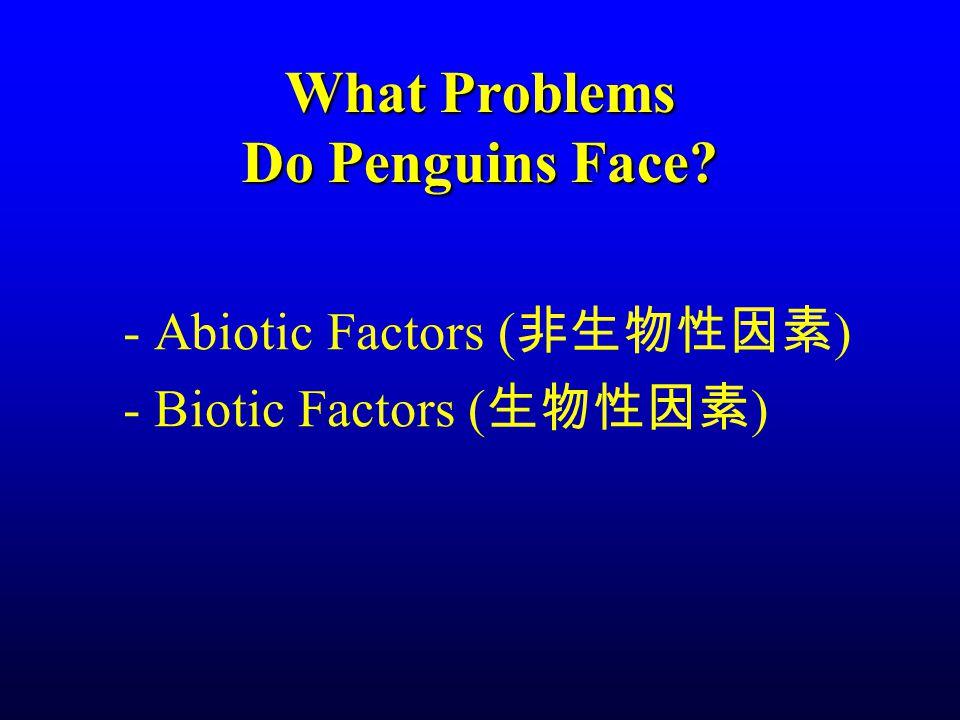 What Problems Do Penguins Face? - Abiotic Factors ( 非生物性因素 ) - Biotic Factors ( 生物性因素 )