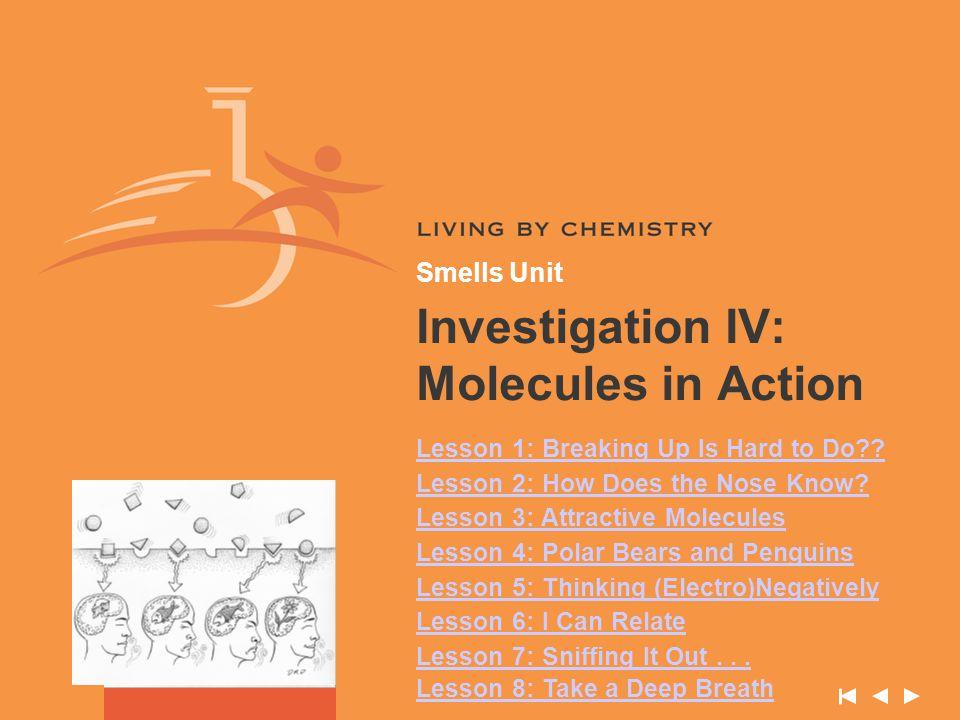 Smells Unit – Investigation IV Lesson 3: Attractive Molecules