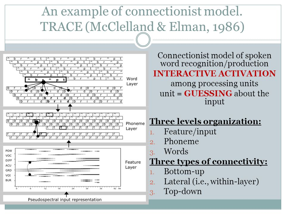 Connectionist model of spoken word recognition/production INTERACTIVE ACTIVATION among processing units unit = GUESSING about the input Three levels o