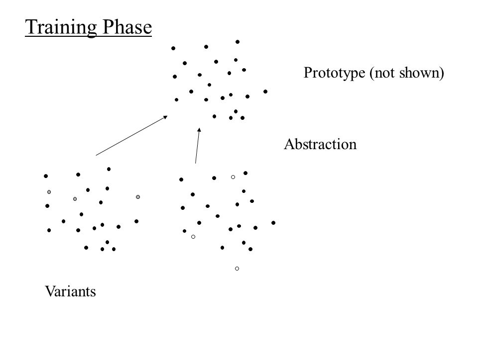 Training Phase Abstraction Prototype (not shown) Variants