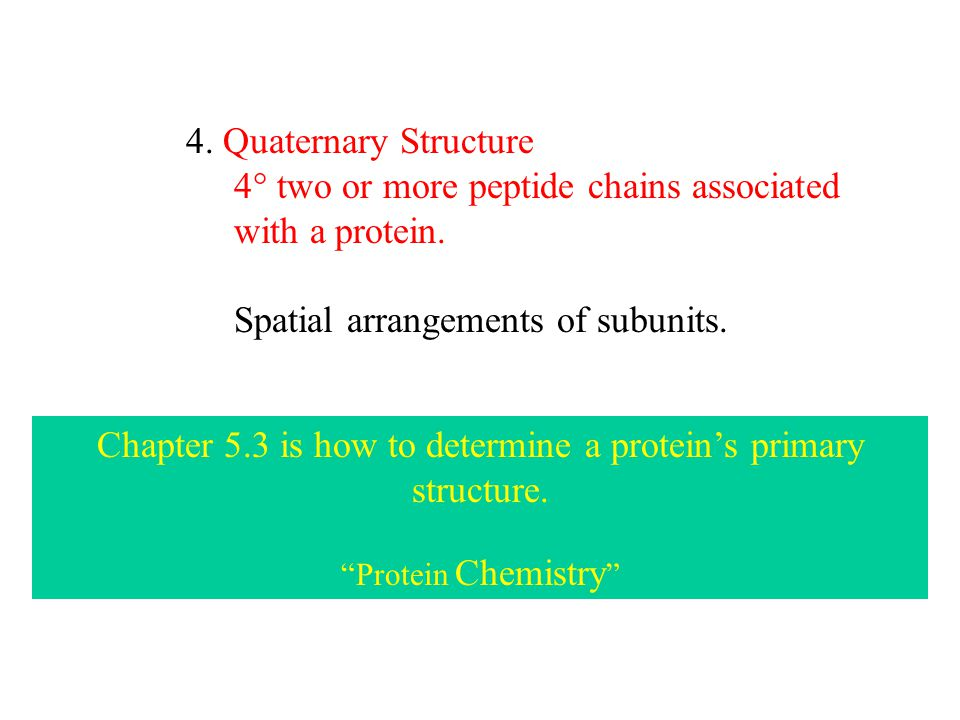 4. Quaternary Structure 4  two or more peptide chains associated with a protein.