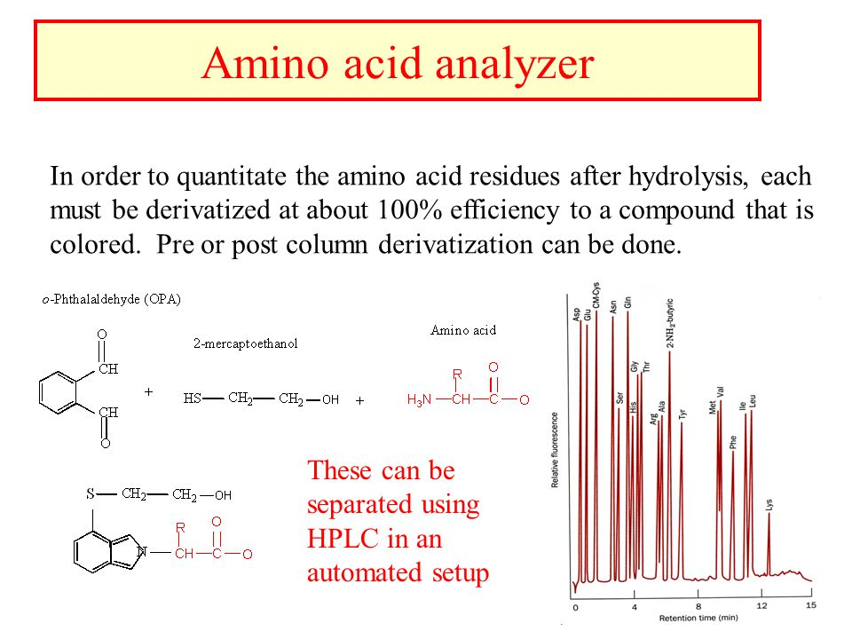 Amino acid analyzer In order to quantitate the amino acid residues after hydrolysis, each must be derivatized at about 100% efficiency to a compound that is colored.