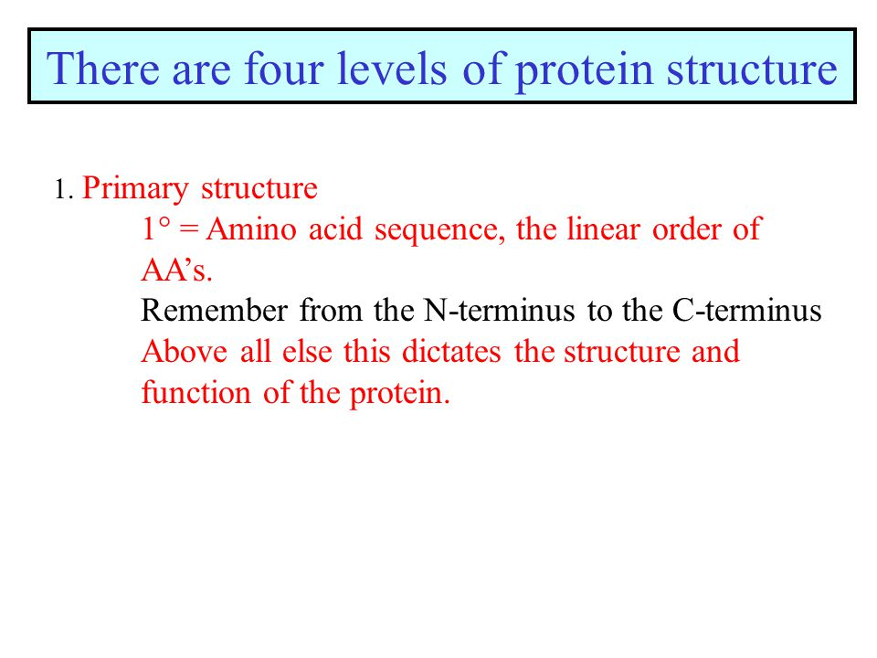 There are four levels of protein structure 1.