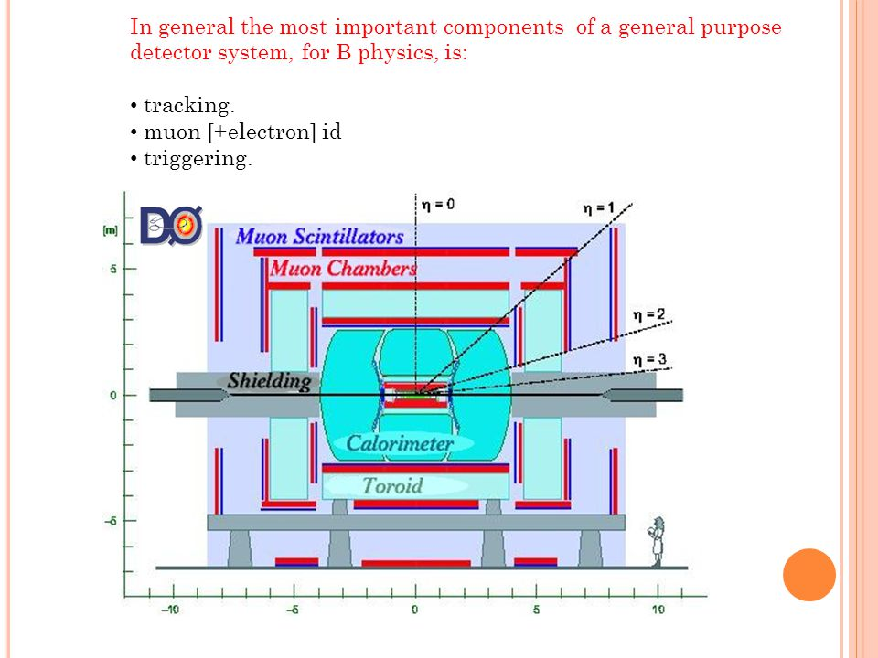 In general the most important components of a general purpose detector system, for B physics, is: tracking. muon [+electron] id triggering. 21