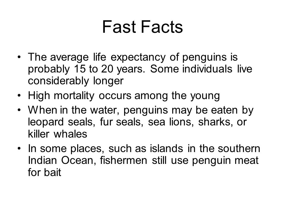 Fast Facts The average life expectancy of penguins is probably 15 to 20 years.
