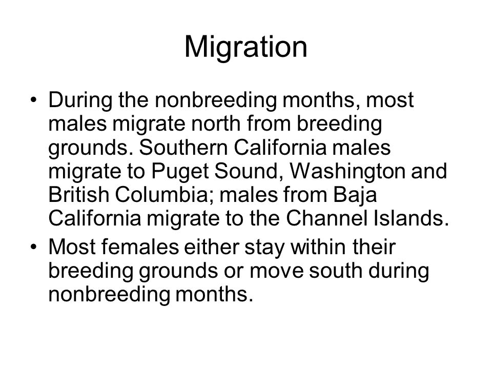 Migration During the nonbreeding months, most males migrate north from breeding grounds.