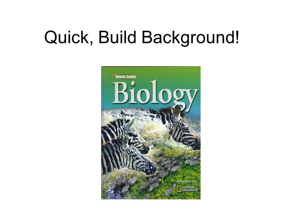 Quick, Build Background!