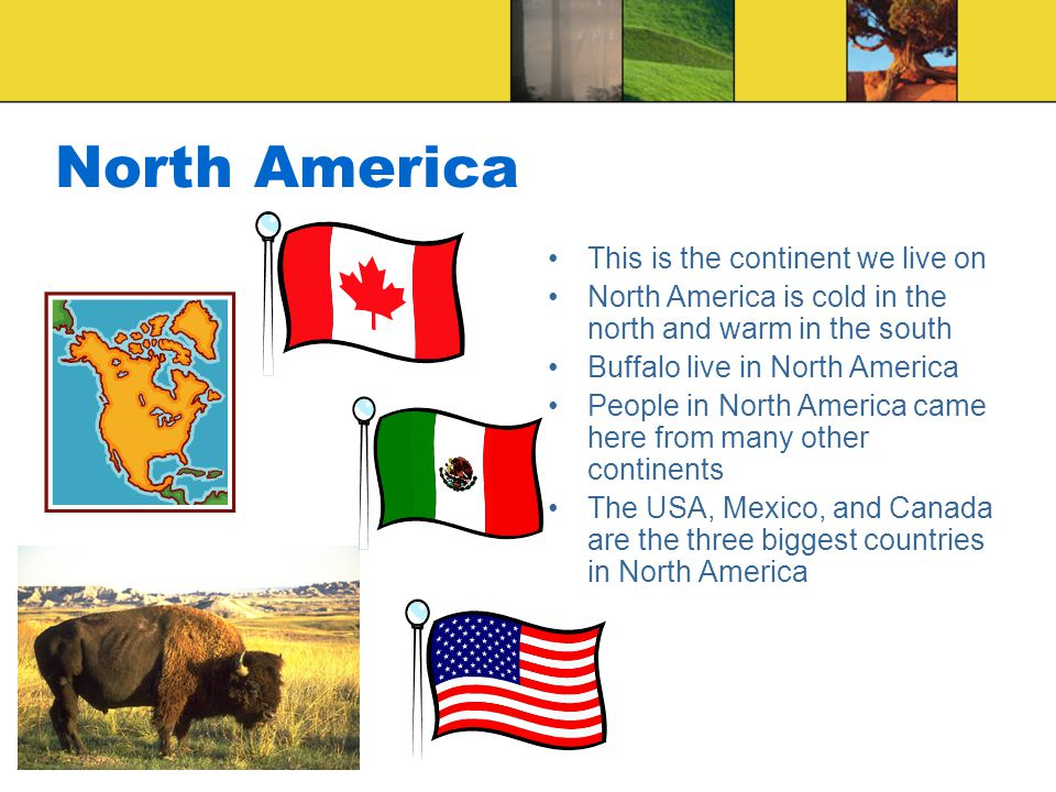 North America This is the continent we live on North America is cold in the north and warm in the south Buffalo live in North America People in North America came here from many other continents The USA, Mexico, and Canada are the three biggest countries in North America
