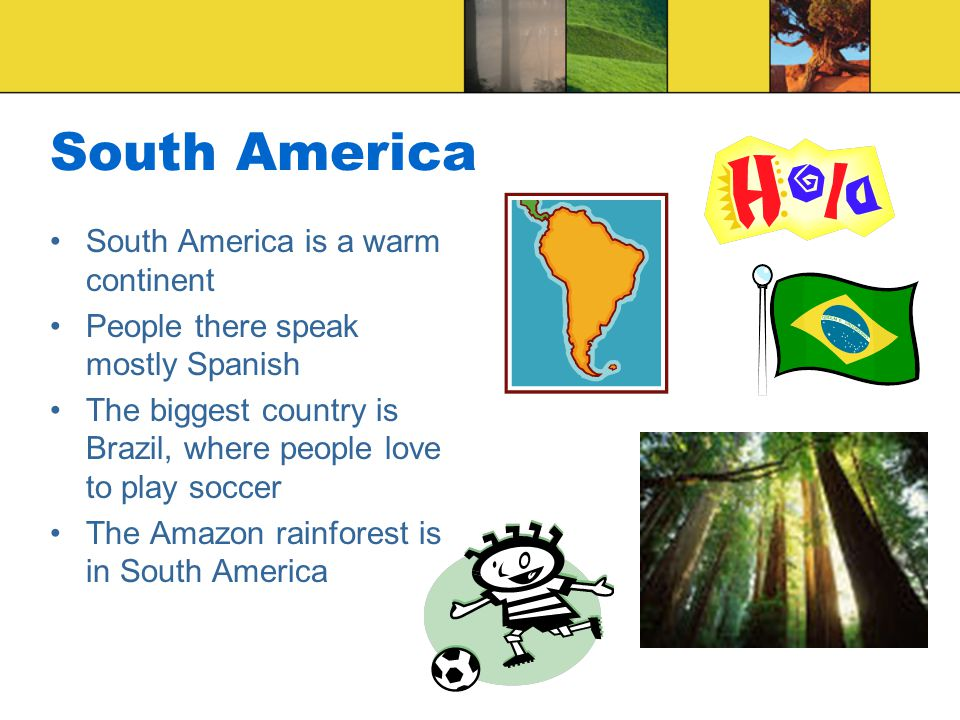 4.Which continent would you visit if you wanted to see the Amazon rainforest.