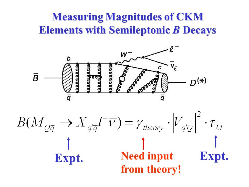 Measuring Magnitudes of CKM Elements with Semileptonic B Decays Expt. Need input from theory!