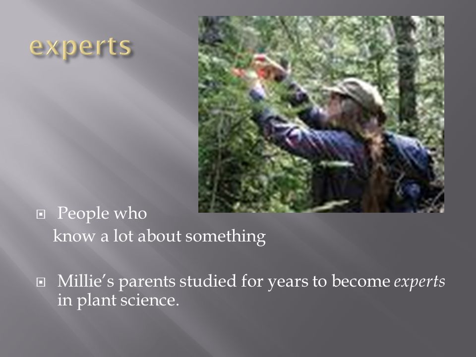  People who know a lot about something  Millie's parents studied for years to become experts in plant science.