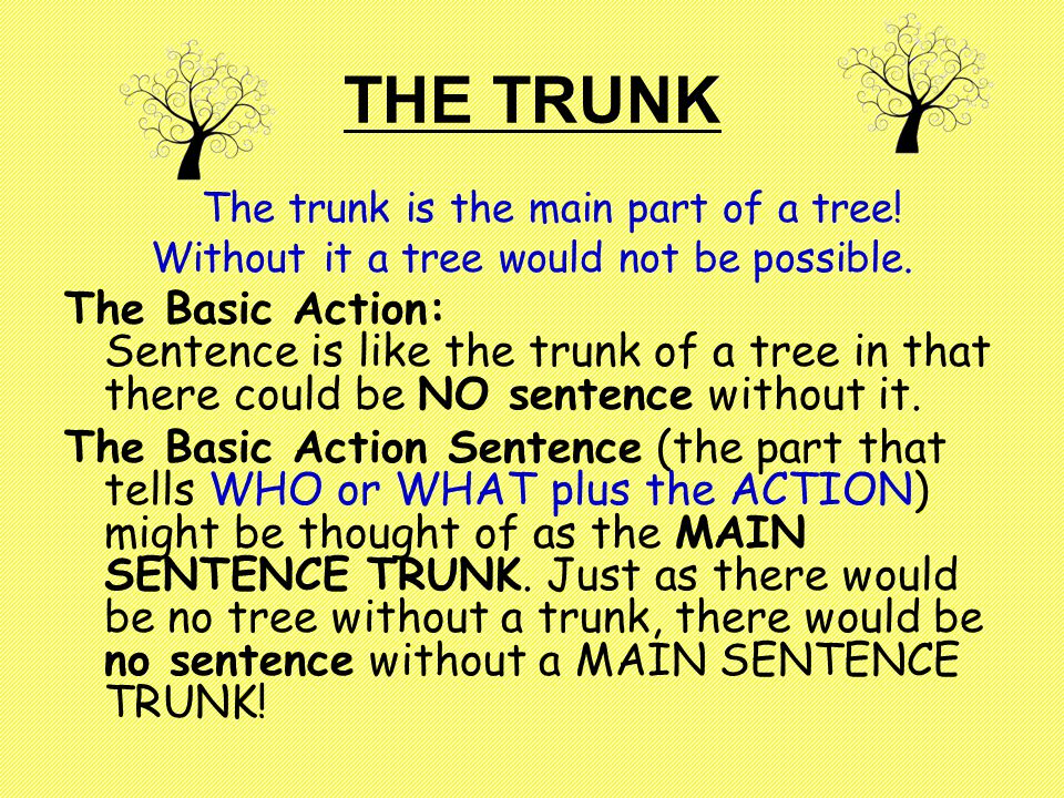 THE TRUNK The trunk is the main part of a tree. Without it a tree would not be possible.
