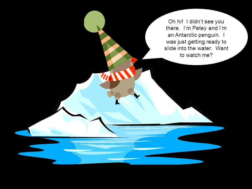 Oh hi. I didn't see you there. I'm Petey and I'm an Antarctic penguin.