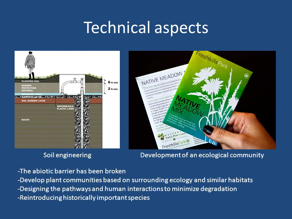 Technical aspects Soil engineeringDevelopment of an ecological community -The abiotic barrier has been broken -Develop plant communities based on surrounding ecology and similar habitats -Designing the pathways and human interactions to minimize degradation -Reintroducing historically important species