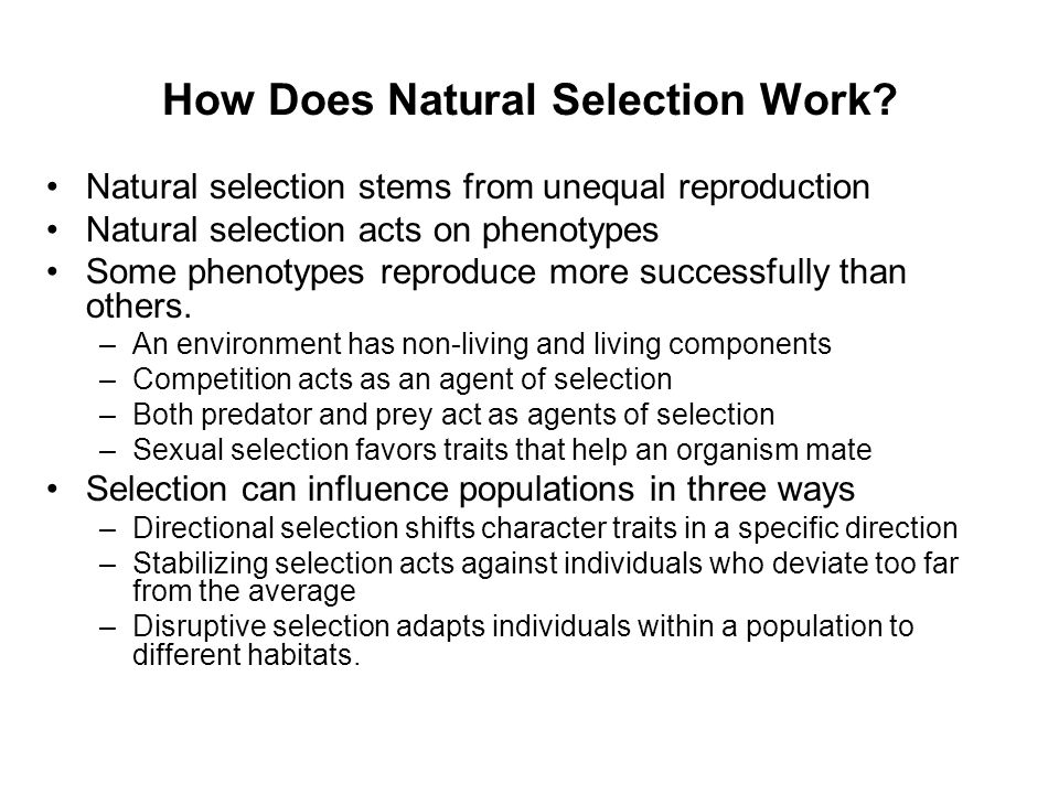 How Does Natural Selection Work? Natural selection stems from unequal reproduction Natural selection acts on phenotypes Some phenotypes reproduce more