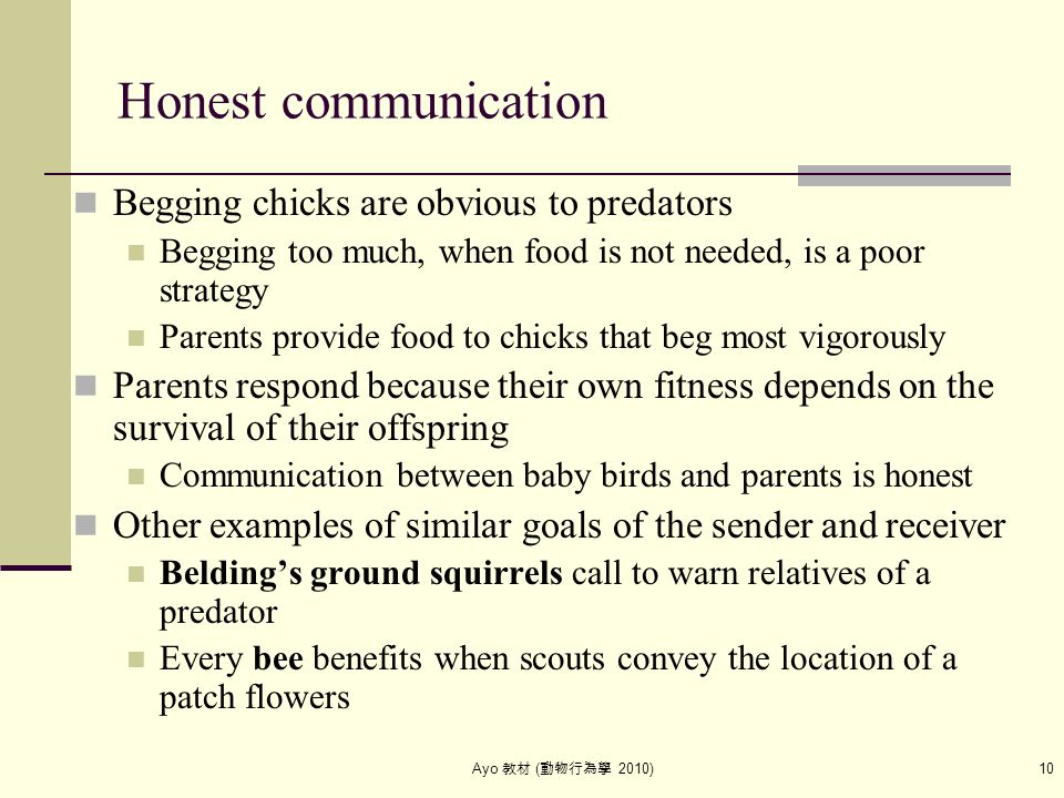Ayo 教材 ( 動物行為學 2010) 10 Honest communication Begging chicks are obvious to predators Begging too much, when food is not needed, is a poor strategy Par