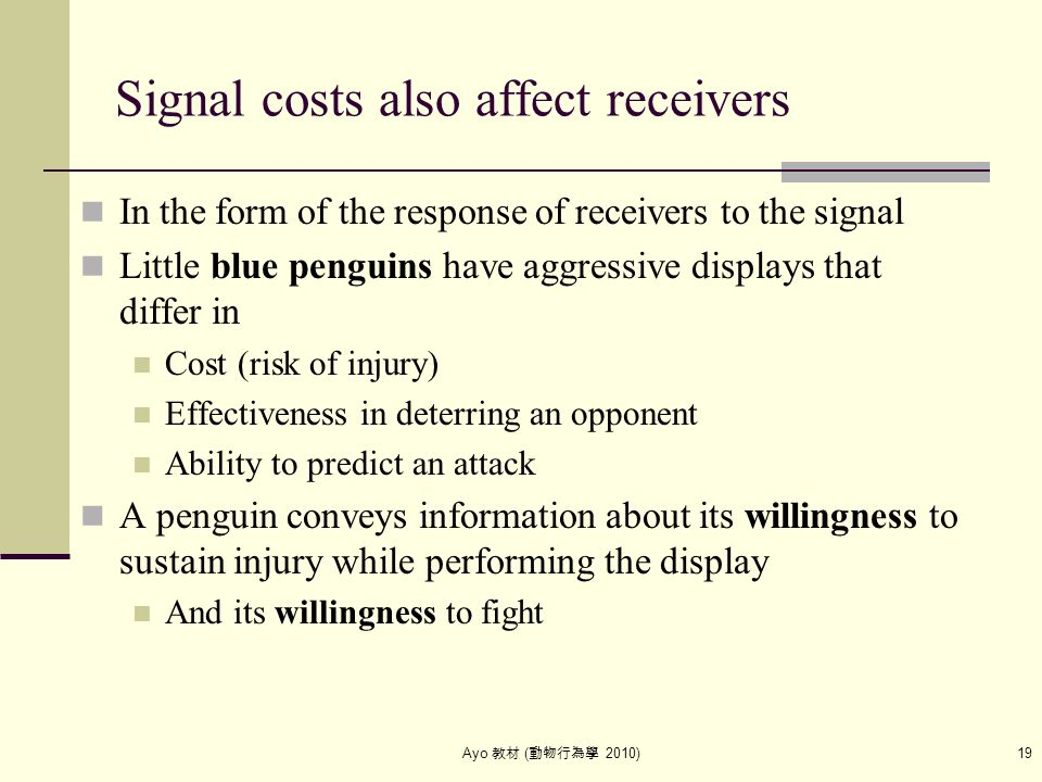 Ayo 教材 ( 動物行為學 2010) 19 Signal costs also affect receivers In the form of the response of receivers to the signal Little blue penguins have aggressive