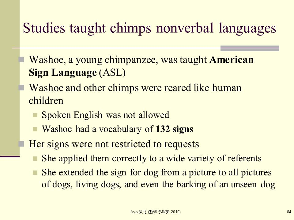 Ayo 教材 ( 動物行為學 2010) 64 Studies taught chimps nonverbal languages Washoe, a young chimpanzee, was taught American Sign Language (ASL) Washoe and other