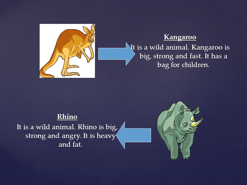 Kangaroo It is a wild animal.Kangaroo is big, strong and fast.