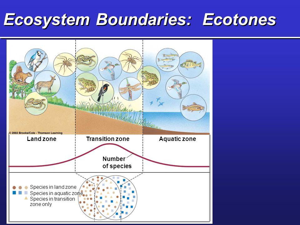 Ecosystem Boundaries: Ecotones Land zoneTransition zoneAquatic zone Number of species Species in land zone Species in aquatic zone Species in transiti