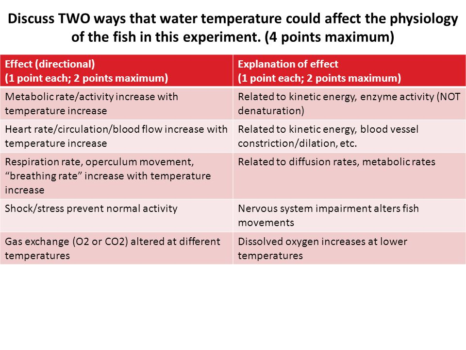 Discuss TWO ways that water temperature could affect the physiology of the fish in this experiment. (4 points maximum) Effect (directional) (1 point e