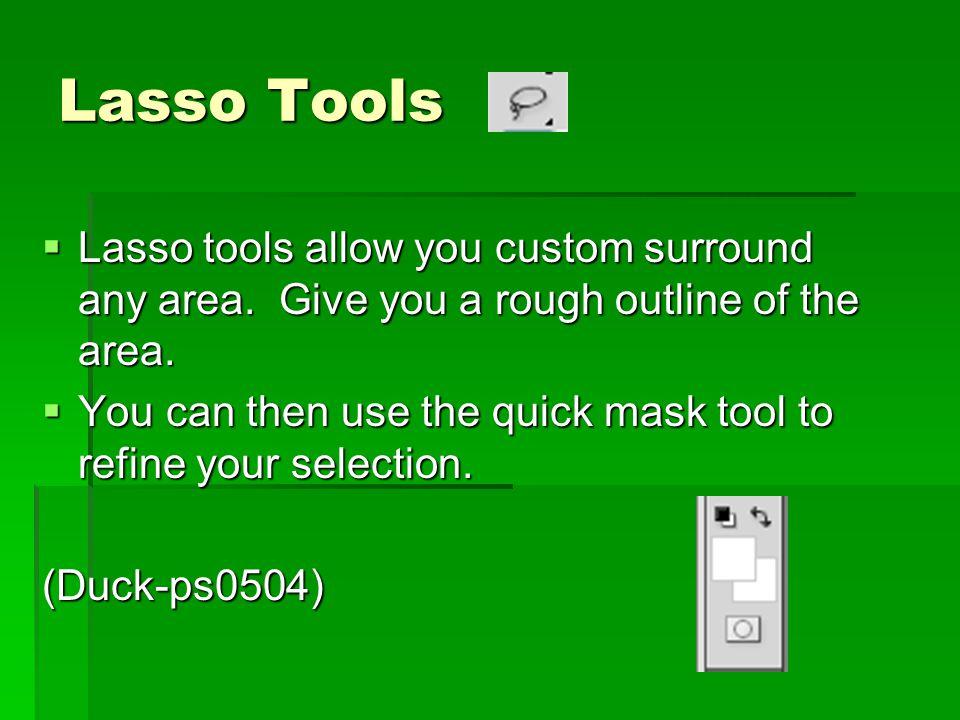Lasso Tools  Lasso tools allow you custom surround any area.