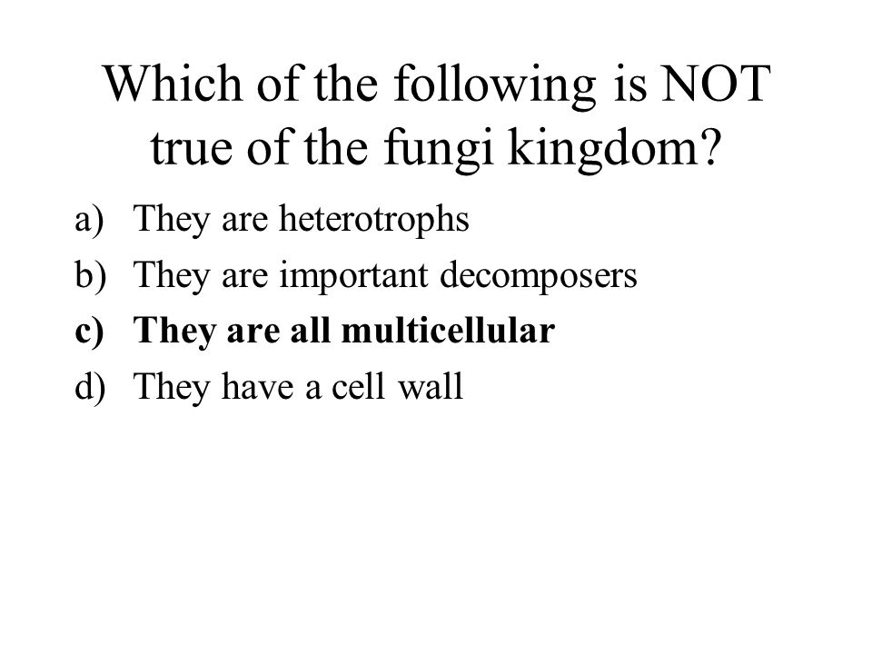 Which of the following is NOT true of the fungi kingdom.