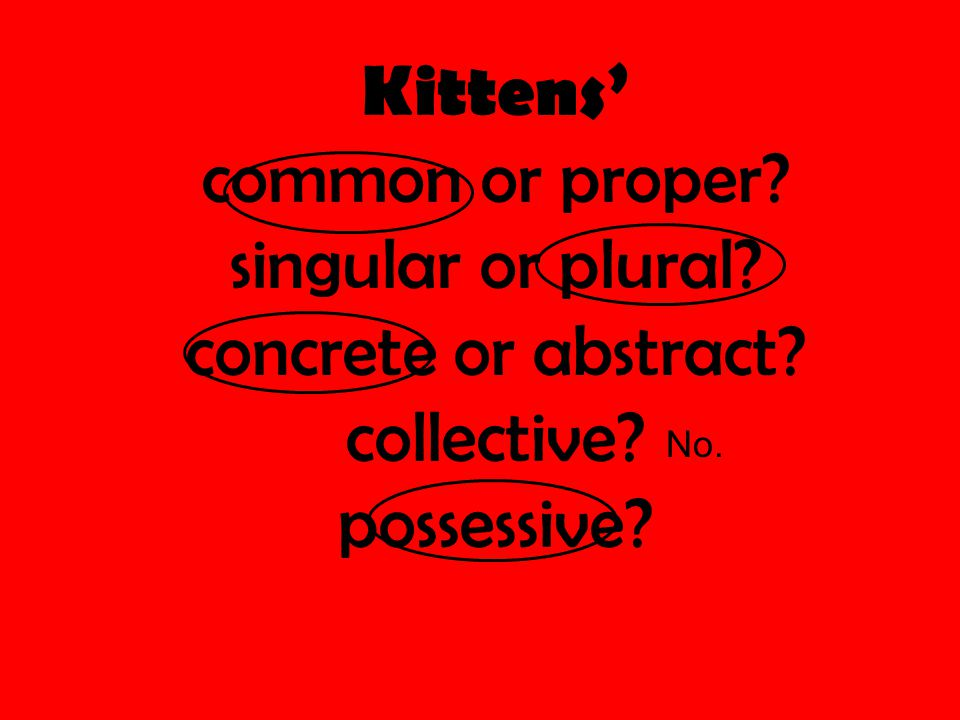 Kittens' common or proper? singular or plural? concrete or abstract? collective? possessive? No.