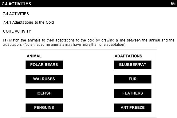 66 7.4 ACTIVITIES 7.4.1 Adaptations to the Cold CORE ACTIVITY (a) Match the animals to their adaptations to the cold by drawing a line between the animal and the adaptation.