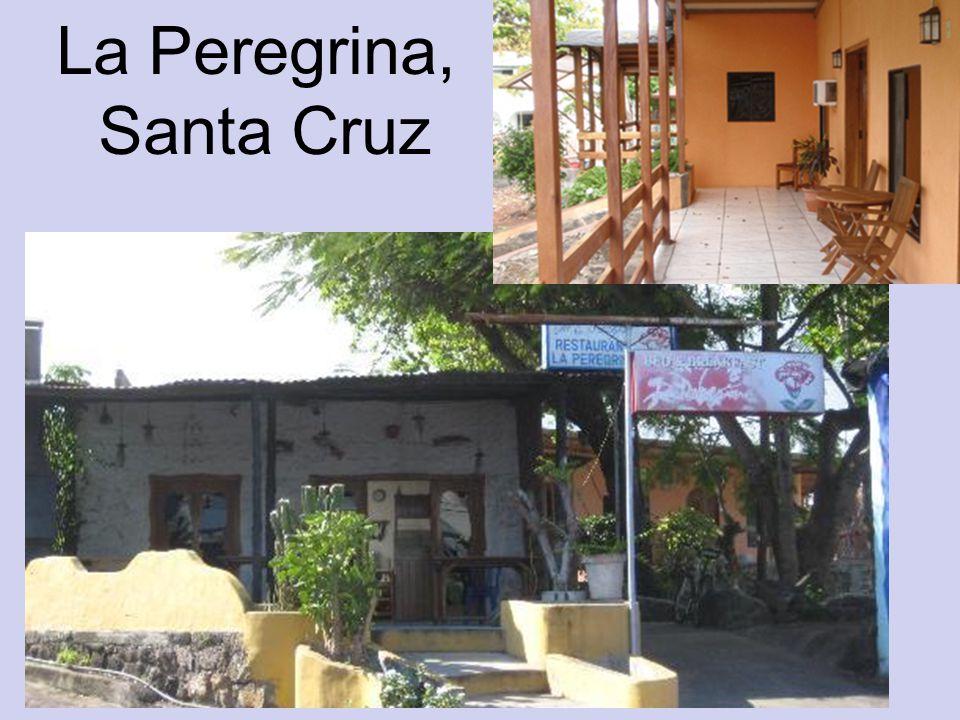 La Peregrina, Santa Cruz