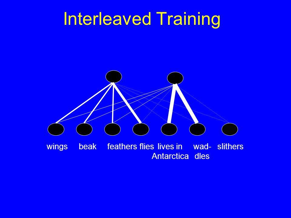 Interleaved Training slitherslives in Antarctica wad- dles wingsbeakfeathersflies
