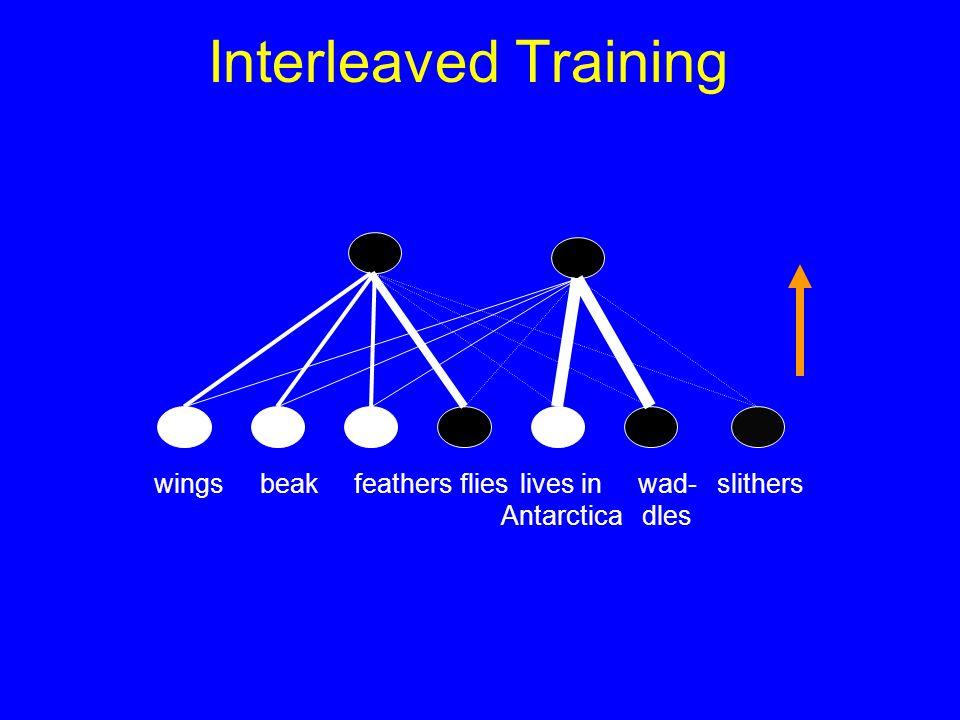 Interleaved Training slitherslives in Antarctica wingsbeakfeathersflies wad- dles