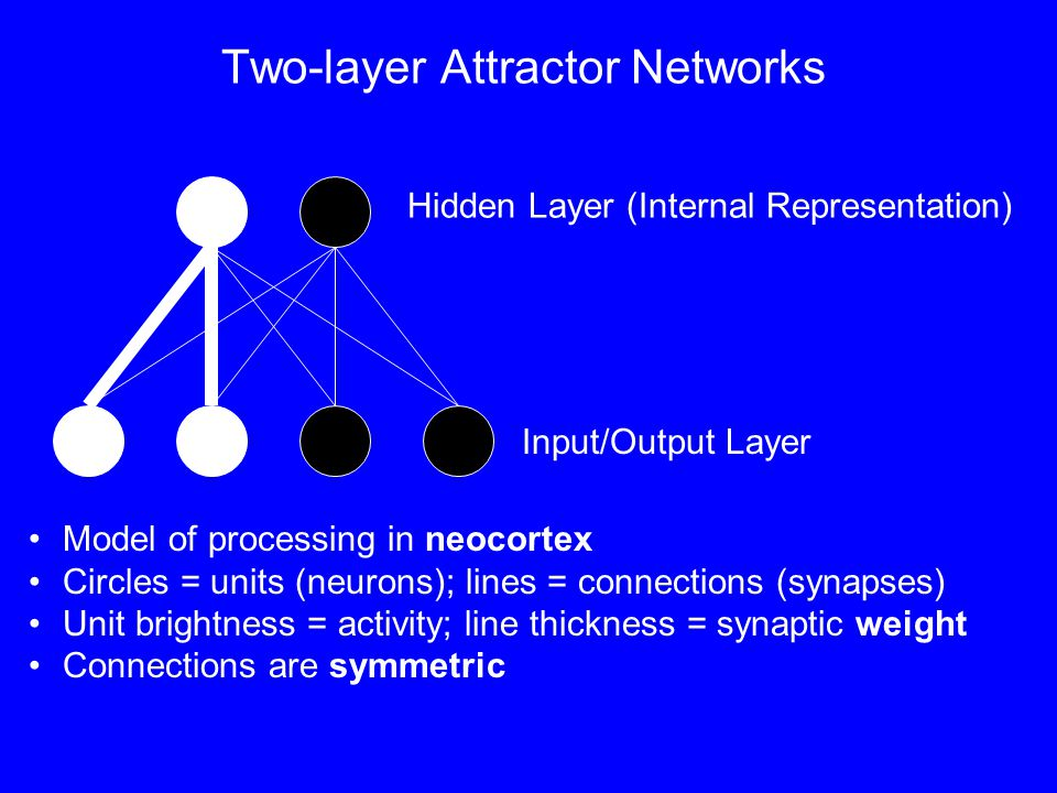 Two-layer Attractor Networks Input/Output Layer Hidden Layer (Internal Representation) Model of processing in neocortex Circles = units (neurons); lines = connections (synapses) Unit brightness = activity; line thickness = synaptic weight Connections are symmetric