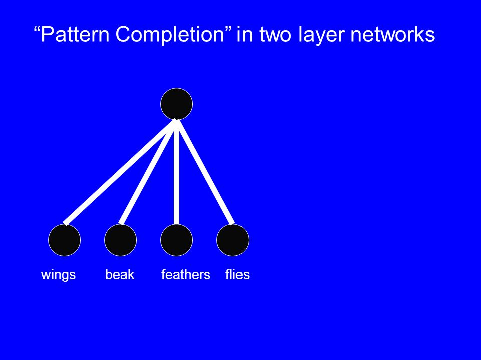 Pattern Completion in two layer networks wingsbeakfeathers flies