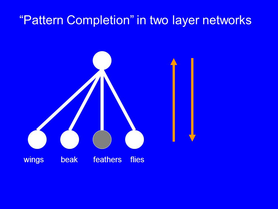 wingsbeakfeathers flies Pattern Completion in two layer networks