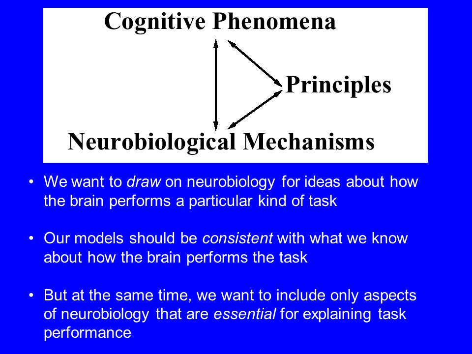 We want to draw on neurobiology for ideas about how the brain performs a particular kind of task Our models should be consistent with what we know about how the brain performs the task But at the same time, we want to include only aspects of neurobiology that are essential for explaining task performance