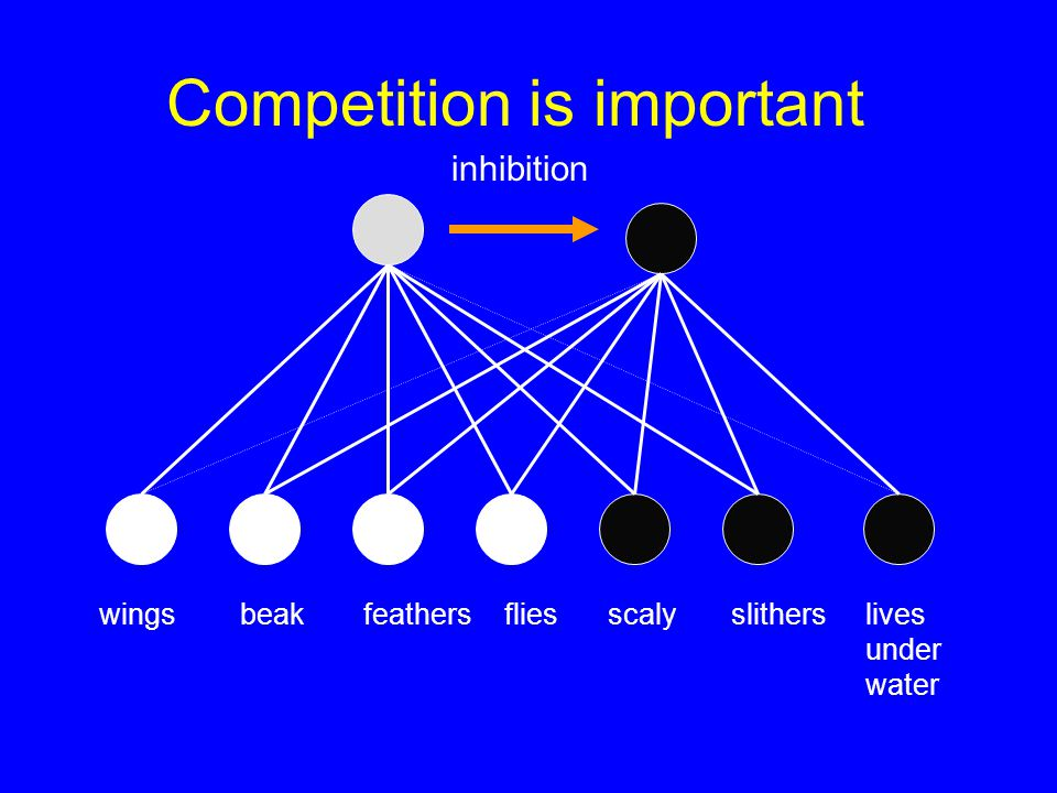 Competition is important lives under water inhibition scalyslithers wingsbeakfeathers flies