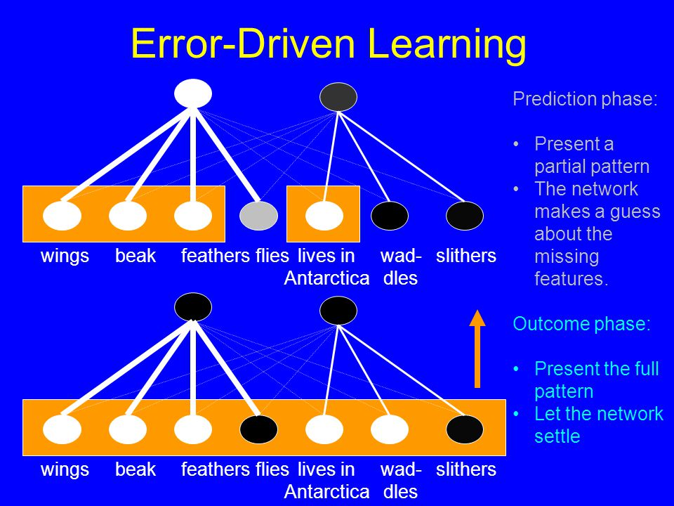 Error-Driven Learning slitherslives in Antarctica wingsbeakfeathersflies slitherslives in Antarctica wingsbeakfeathersflies wad- dles wad- dles Prediction phase: Present a partial pattern The network makes a guess about the missing features.
