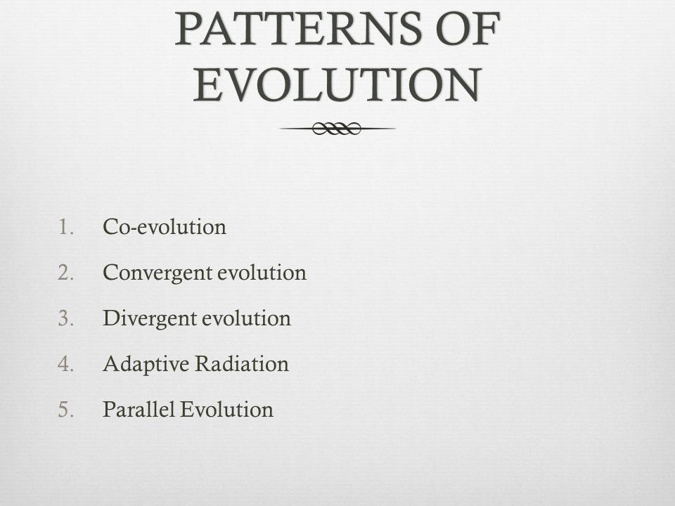 PATTERNS OF EVOLUTION 1.Co-evolution 2.Convergent evolution 3.Divergent evolution 4.Adaptive Radiation 5.Parallel Evolution