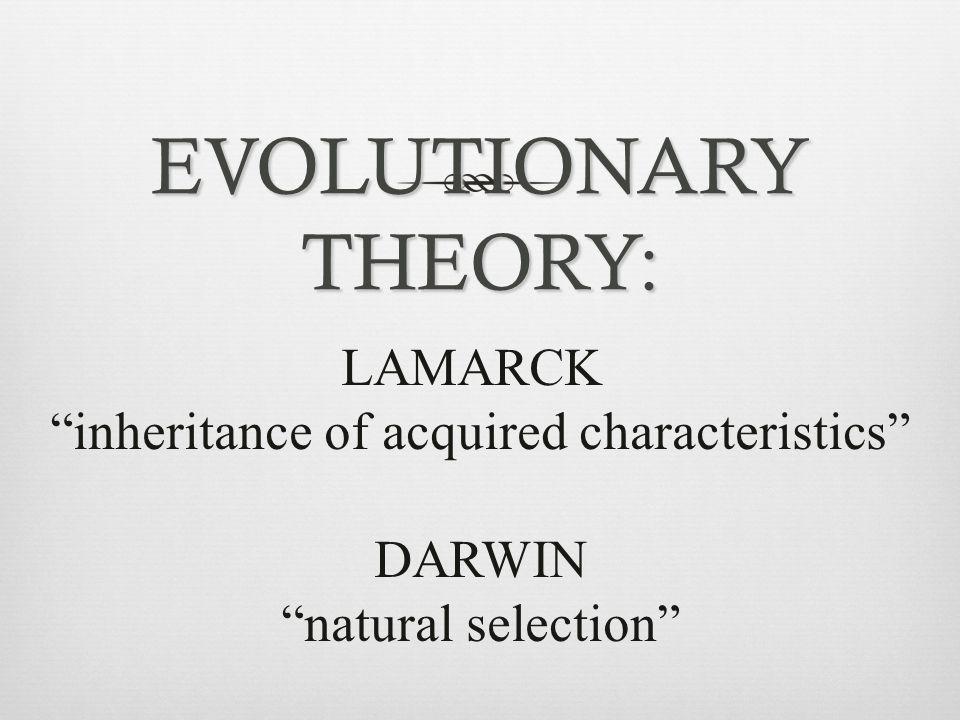 "EVOLUTIONARY THEORY: LAMARCK ""inheritance of acquired characteristics"" DARWIN ""natural selection"""
