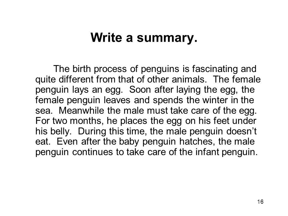 16 Write a summary.
