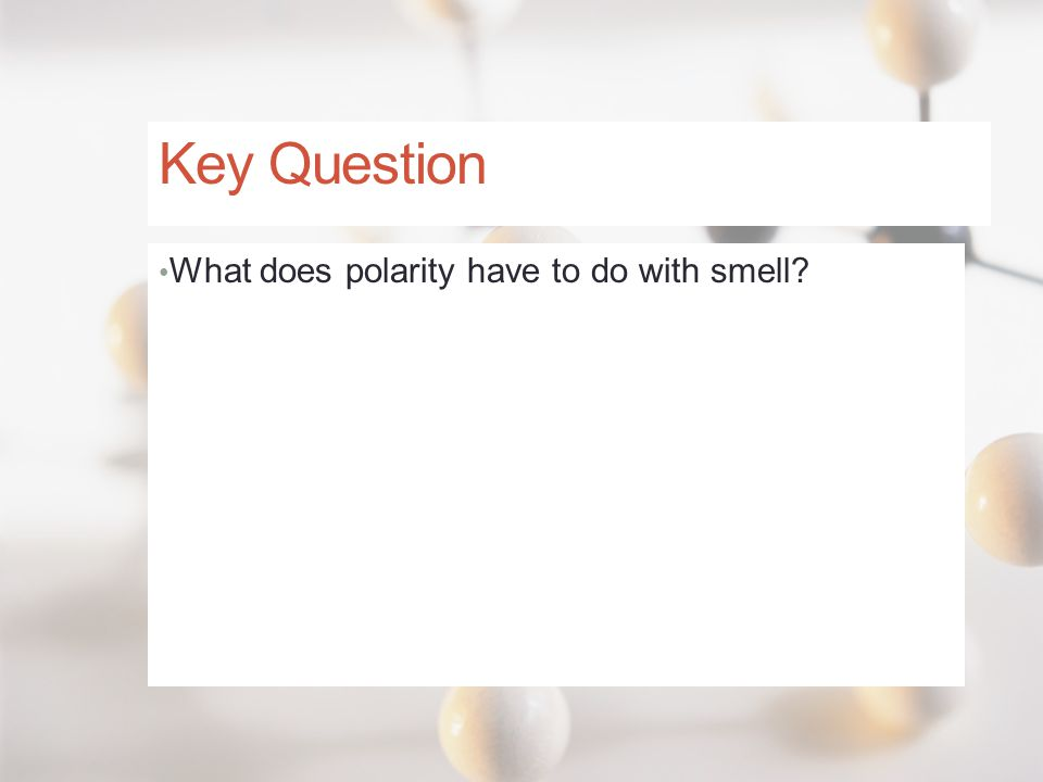 Key Question What does polarity have to do with smell?