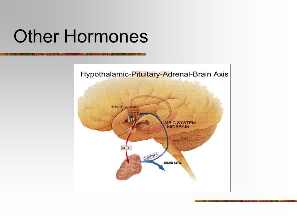 Maternal Behavior - Hormones other hormones: prolactin: milk production (infusion into MPOA can induce maternal behavior rapidly) oxytocin: uterine co