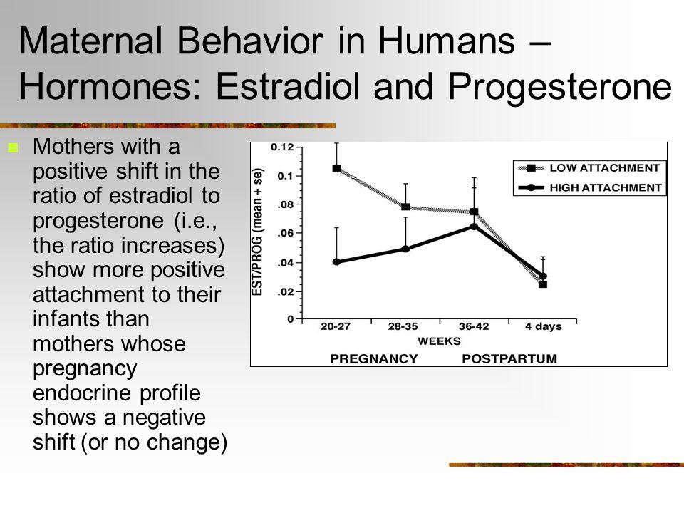 Maternal Behavior in Humans – Hormones: Cortisol