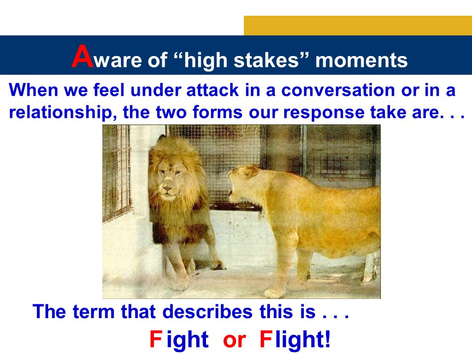 When we feel under attack in a conversation or in a relationship, the two forms our response take are...