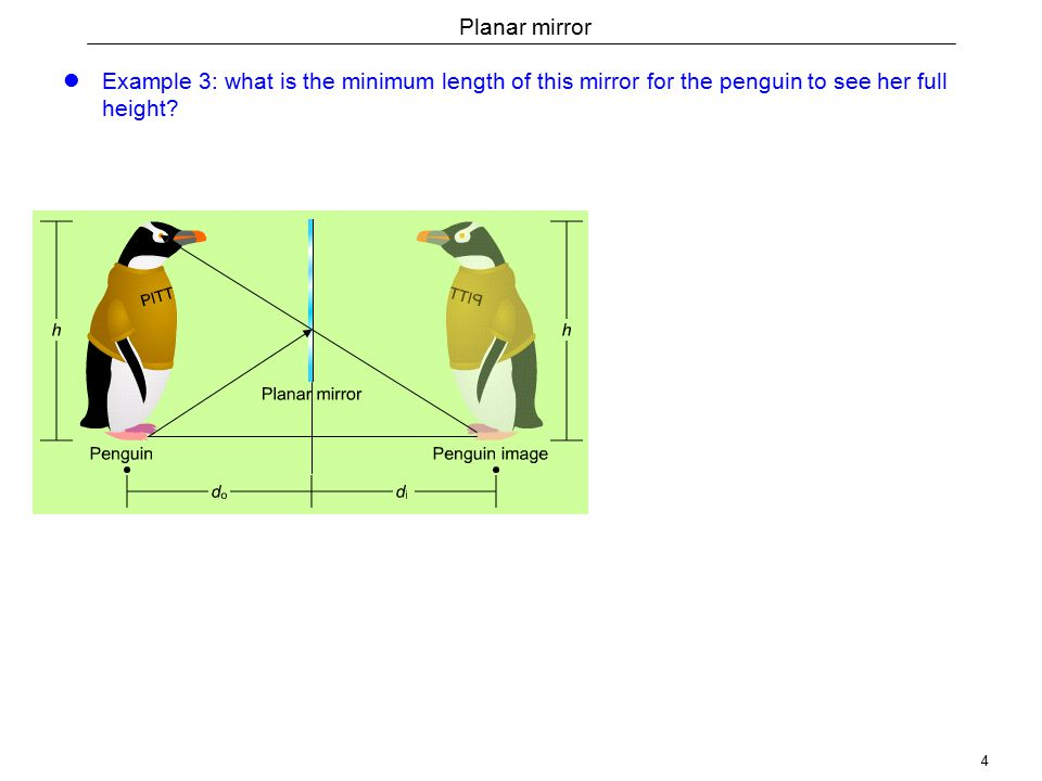 4 Planar mirror Example 3: what is the minimum length of this mirror for the penguin to see her full height?