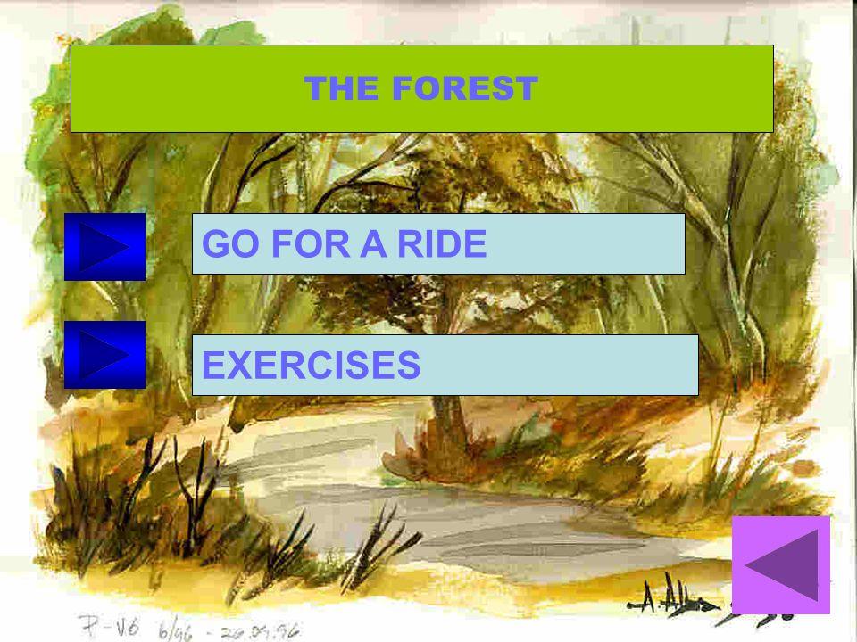 ¿ Qué lugar quieres visitar? The forest The Jungle The Farm Safari The Pole The Village