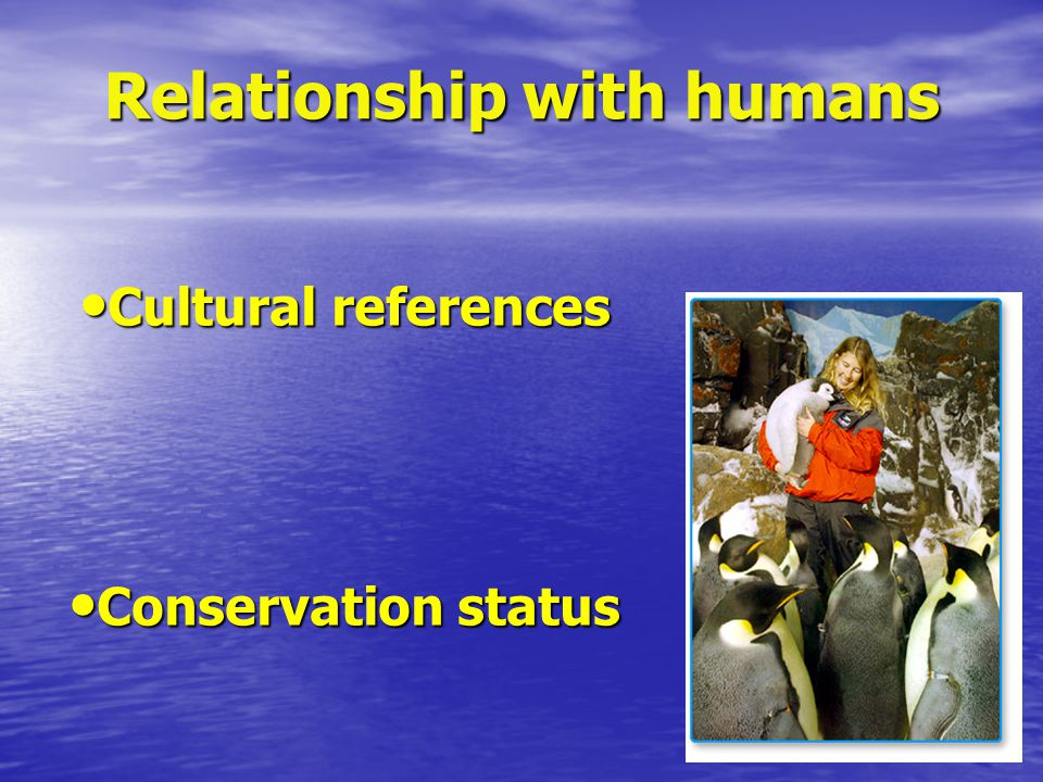 Relationship with humans Cultural references Cultural references Conservation status Conservation status