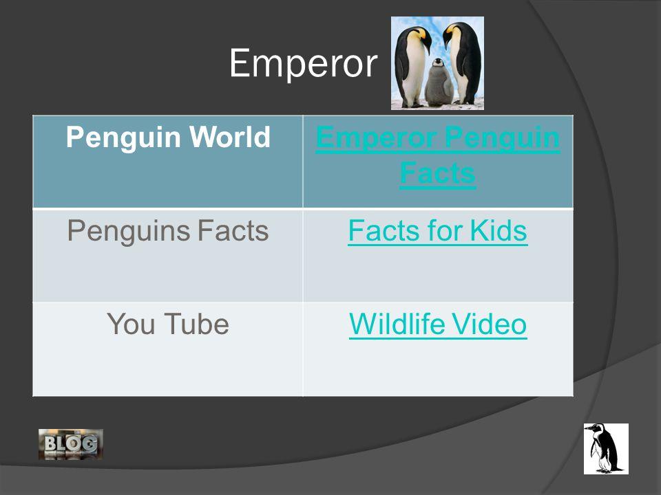 Emperor Penguin WorldEmperor Penguin Facts Penguins FactsFacts for Kids You TubeWildlife Video